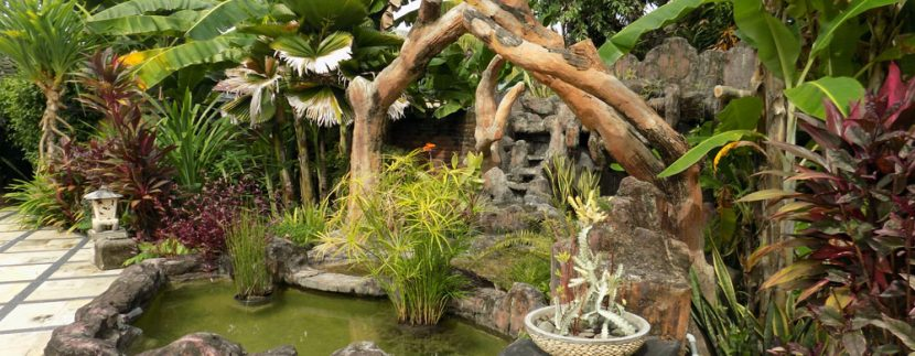 bali-lovina-beach-villa-sales-pond